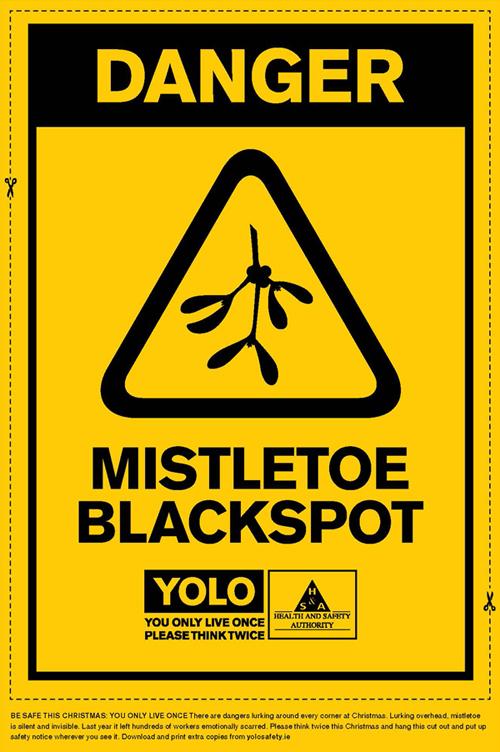 YOLO-MISTLETOE